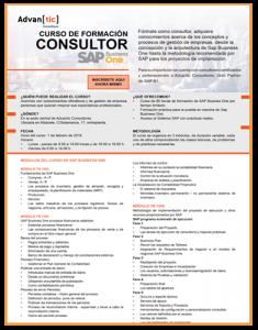 curso SAP Business One