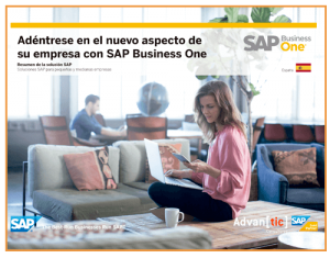 ERP SAP Business One