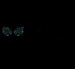 Logo La Piña