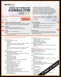 Curso de Formación Consultor SAP
