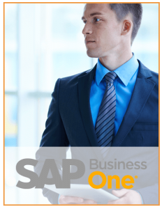 Formación en SAP Business One